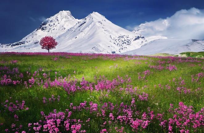 amazing-landscape