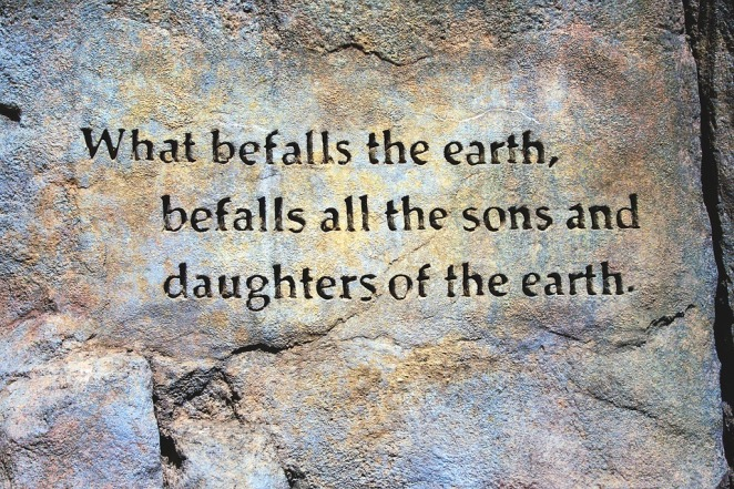 befall-the-earth-quote